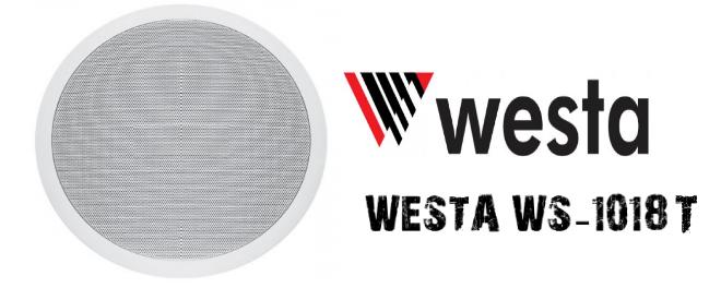 WS-1018-T-hoparlör