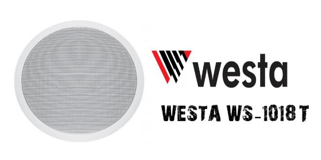 westa-ws-1018T-alçıpan-hoparlör