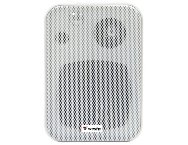 wm-305w-hoparlör